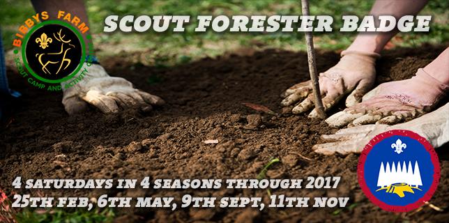 forester-badge-slider-2017